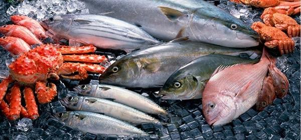 Tránh xa các loại hải sản nhiễm thủy ngân cao