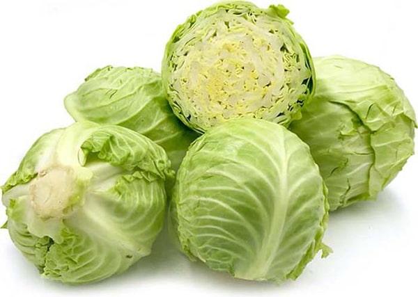 Bắp cải là một món ăn phổ biến