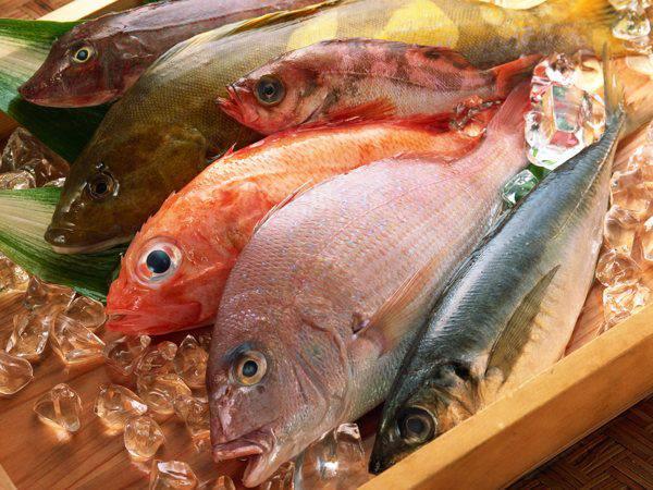 Nhóm cá cung cấp hàm lượng canxi cao cho bà bầu và thai nhi