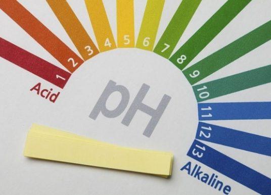 Cách cân bằng môi trường kiềm – axit qua chế độ ăn uống