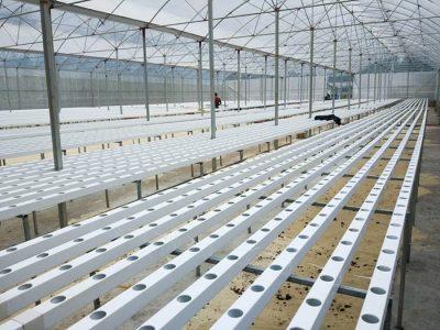 Khung nhà lưới trồng rau thủy canh